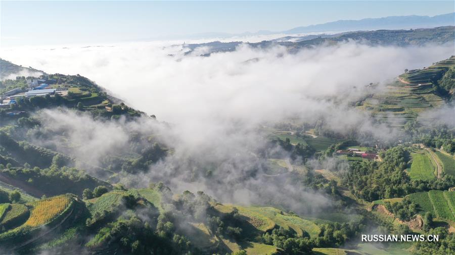 Облачная дымка над террасными полями в провинции Ганьсу