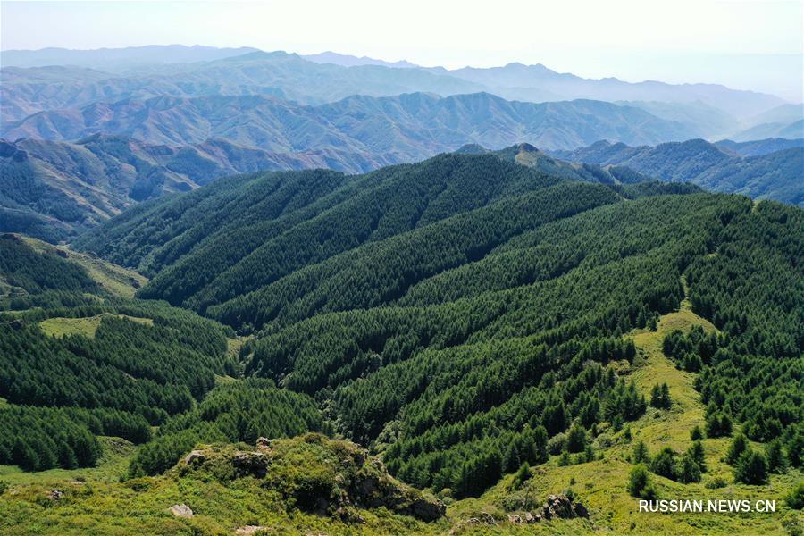 Прекрасный пейзаж лесопарка Сумушань на севере Китая