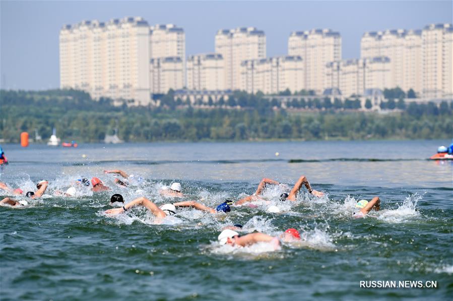 Плавание -- Чемпионат Китая по марафонскому плаванию 2020: обзор соревнований
