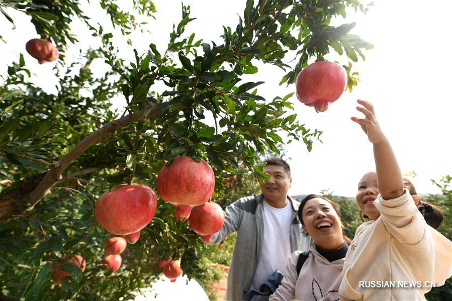 Счастье богатого урожая