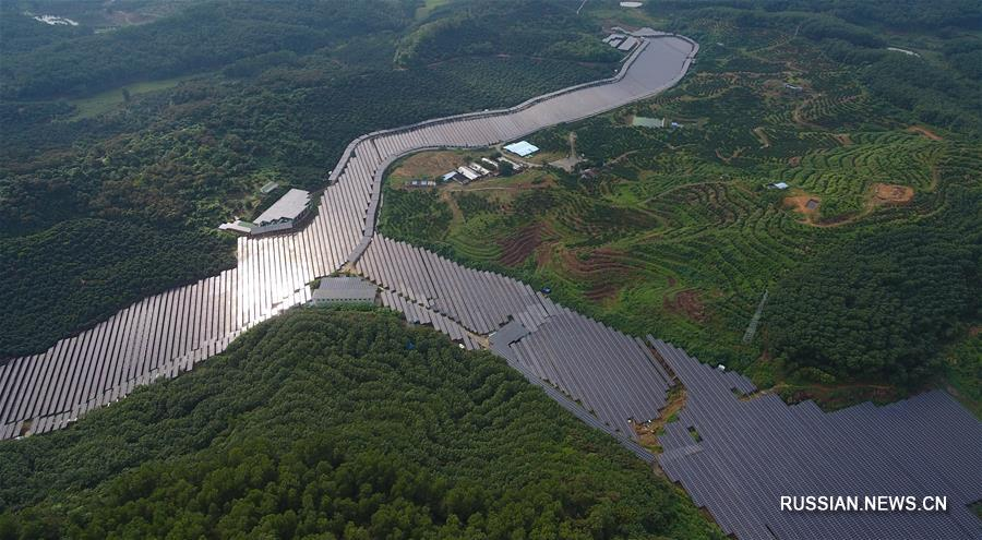 Аквакультура плюс солнечная энергетика -- путь из бедности для фермеров из уезда Цюнчжун