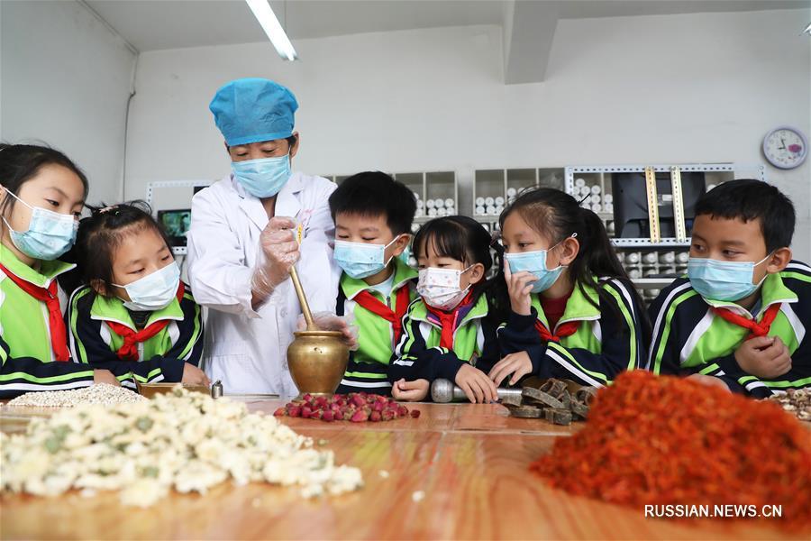 В школах Поднебесной прошли уроки по традиционной китайской медицине