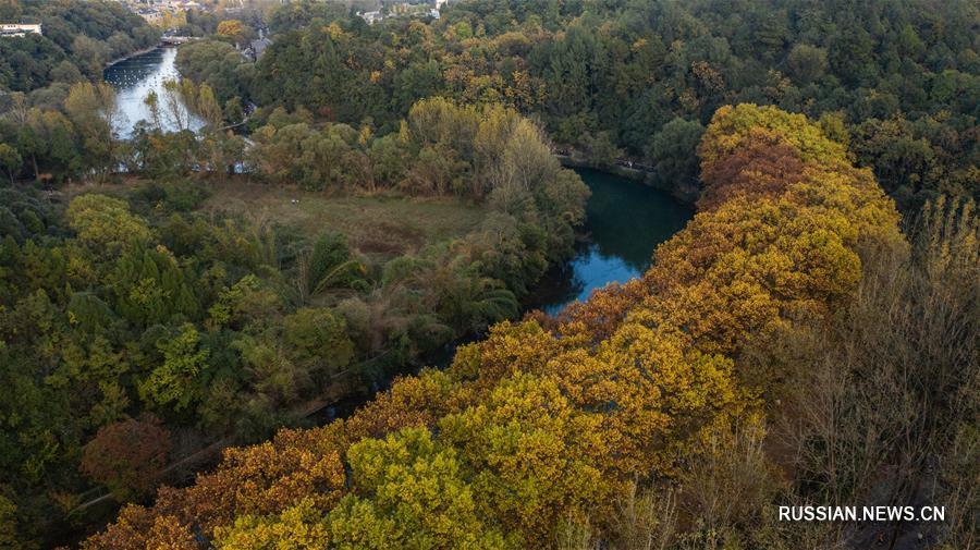 Золотая аллея парка Хуаси в Гуйяне