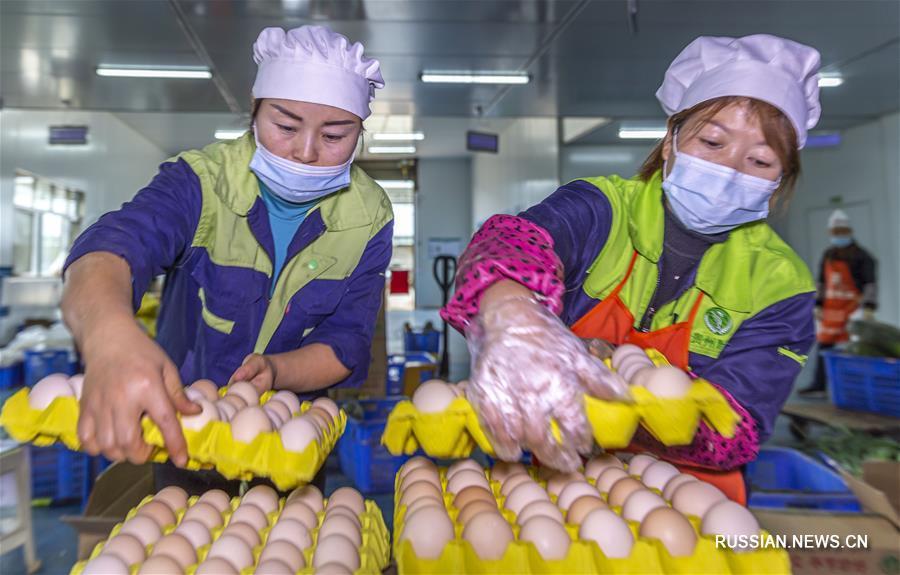 Забота о здоровом питании школьников в уезде Цяньси