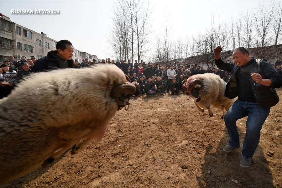 В Китае встретили праздник Лунтайтоу