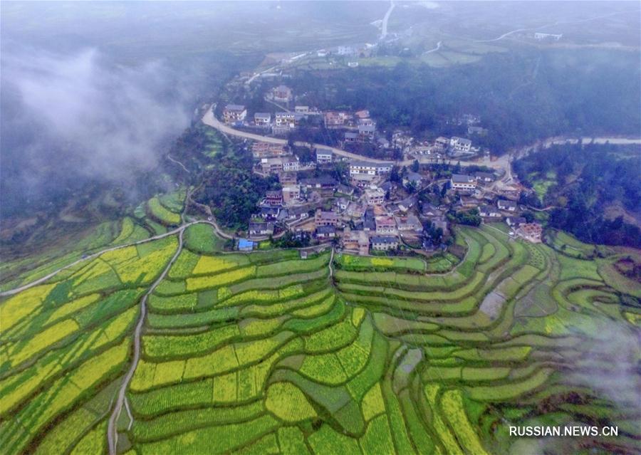 Волшебные туманы в горах Гуйчжоу