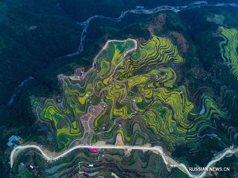 Экологический туризм среди террасных рапсовых полей волости Сяочжоушань