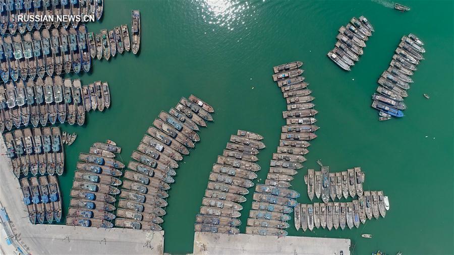 В Китае вступил в действие сезонный запрет на лов рыбы
