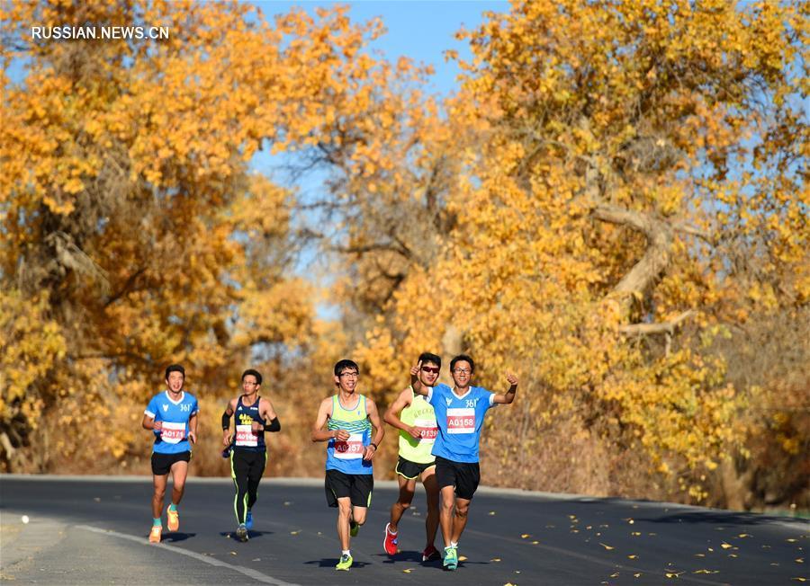 Марафон -- Эдзинский международный марафон через лес евфратских тополей -- 2017