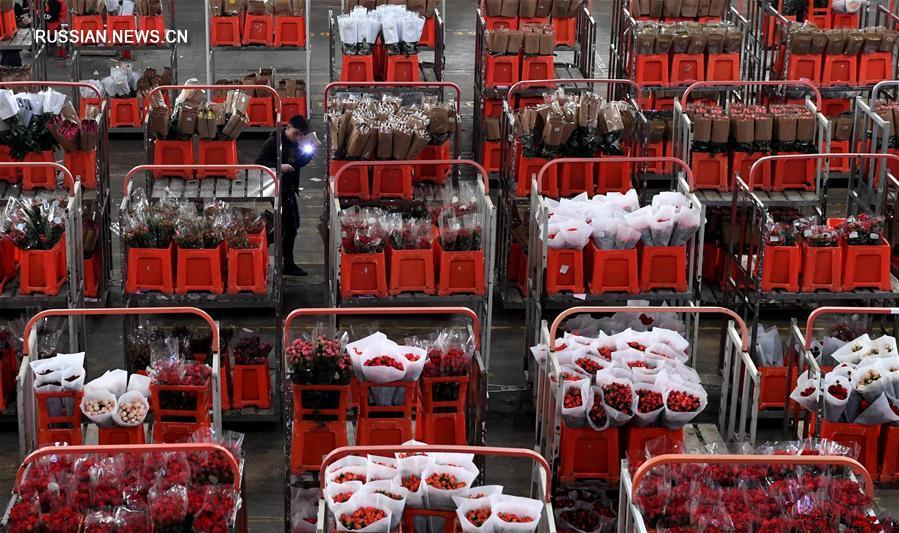 Юньнаньские живые цветы на праздничных рынках Китая
