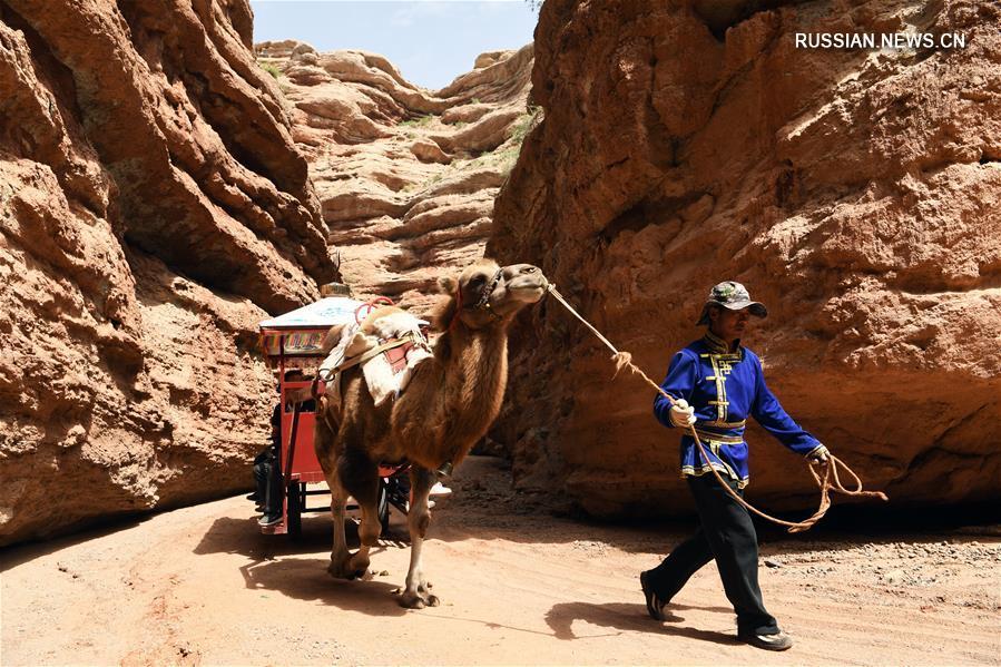 Всестороннее развитие сельского туризма в провинции Ганьсу
