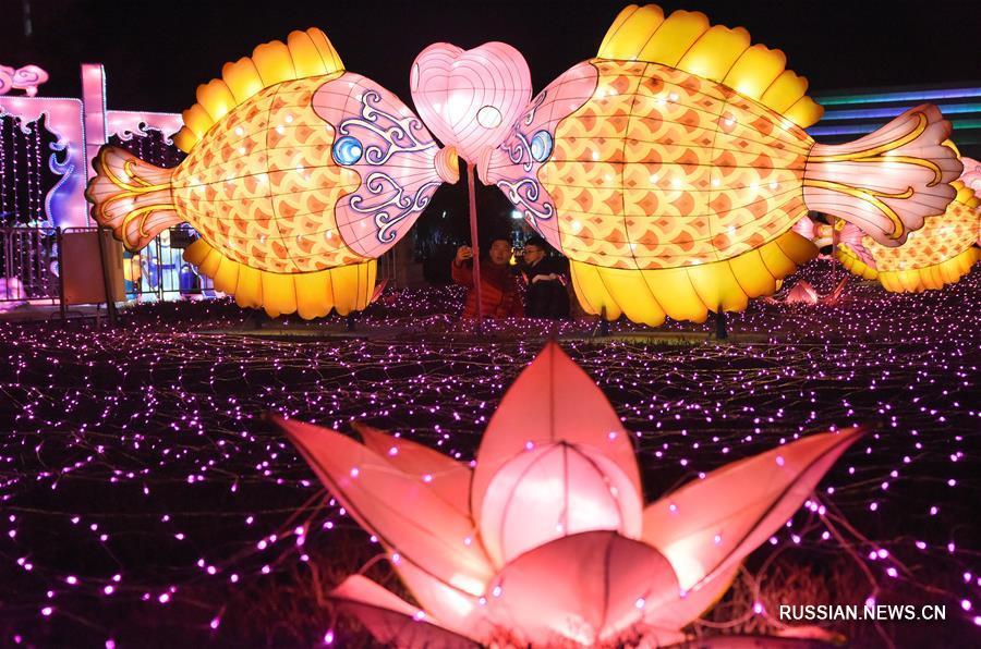 Ослепительные световые инсталляции в честь праздника Фонарей