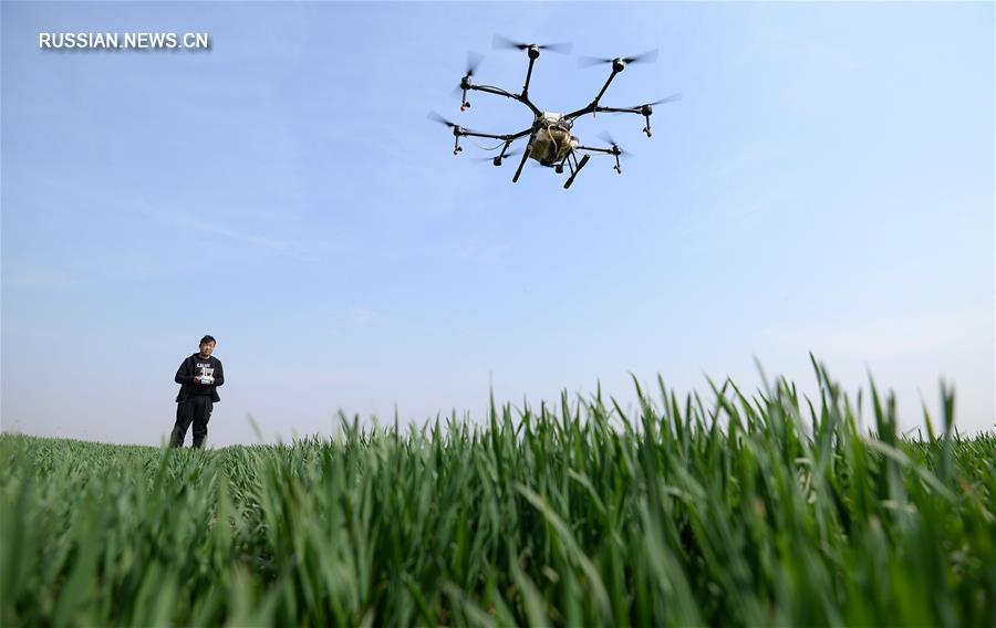 Радости весенних сельскохозяйственных работ в Китае