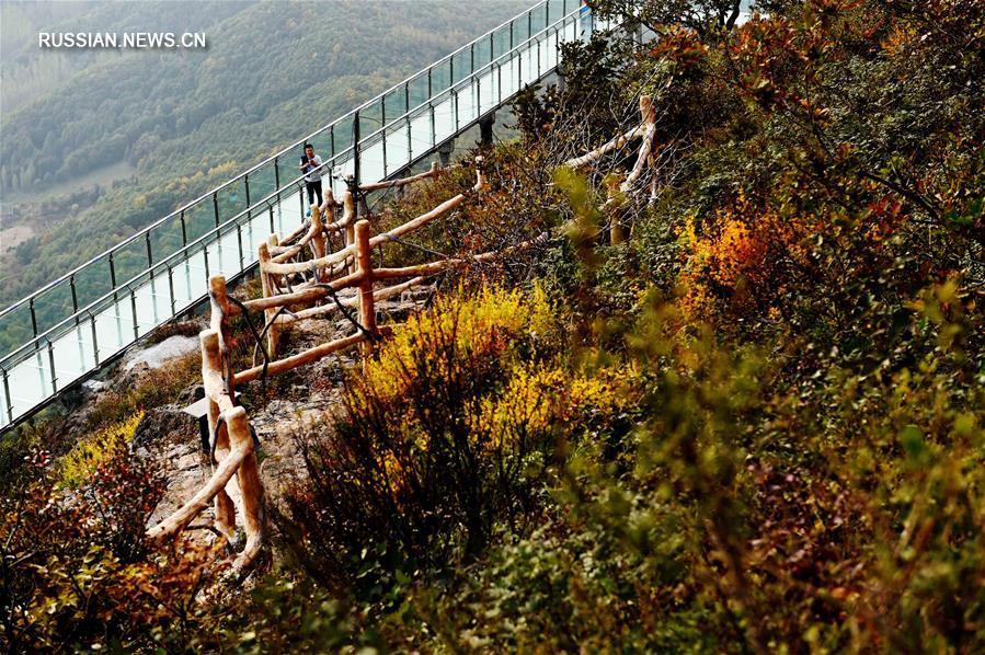 Осенние краски горы Маоэр в Хэйлунцзяне