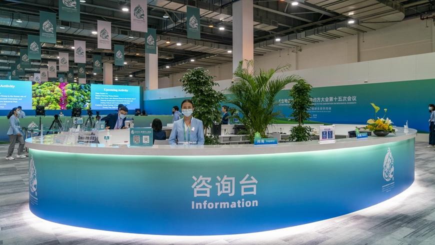 В Китае открылся пресс-центр COP15