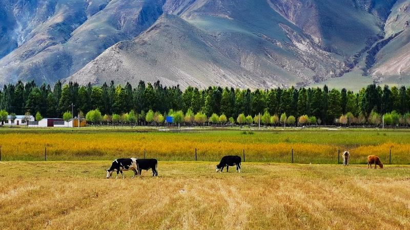Осенние пейзажи в Тибете