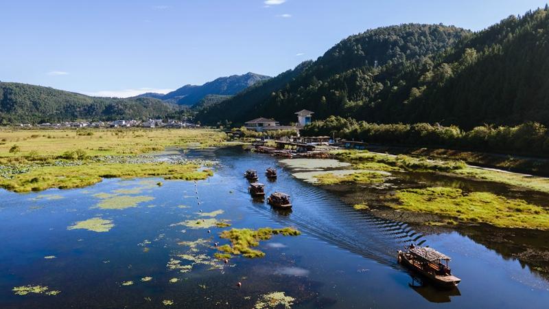Заповедник водно-болотных угодий в Тэнчуне с высоты птичьего полета