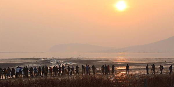 Утро на берегу Лебединого озера в Восточном Китае