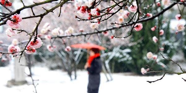 Снегопады в Китае