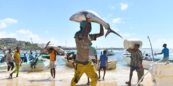 Рыбный рынок в Могадишо