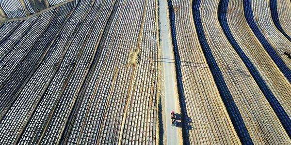 Террасные поля в провинции Хэбэй