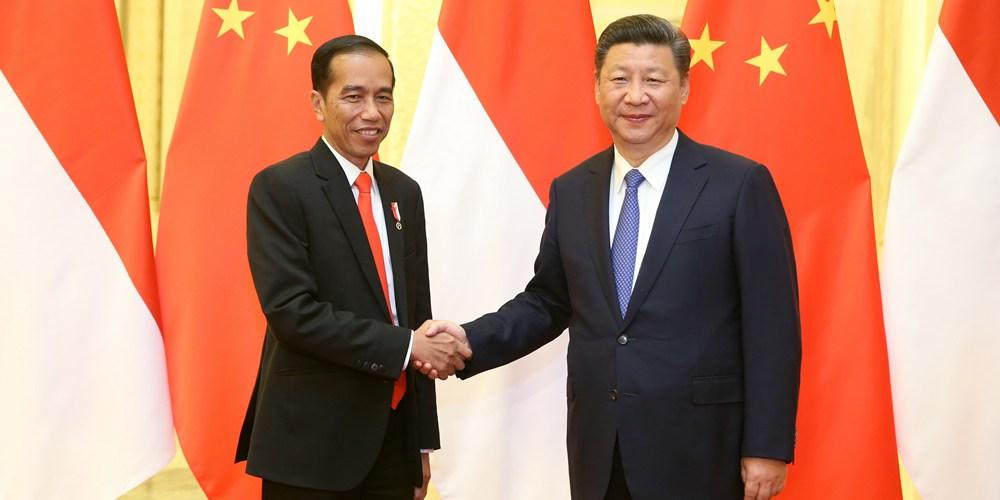 Си Цзиньпин встретился с президентом Индонезии