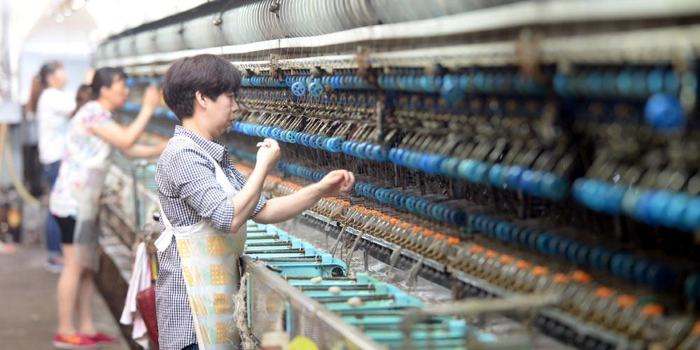 Современное шелковое производство на родине шелка