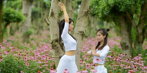 Международный день йоги отметили в Китае