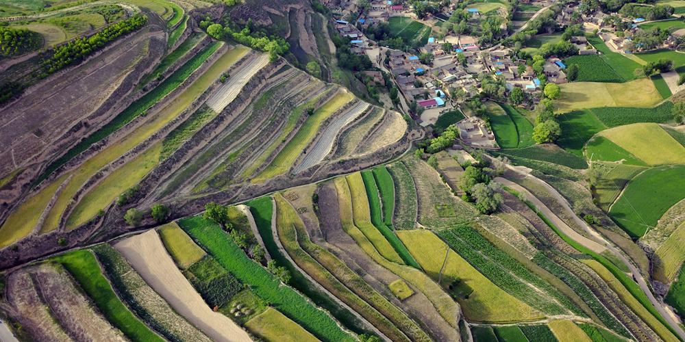 Террасные поля в провинции Ганьсу