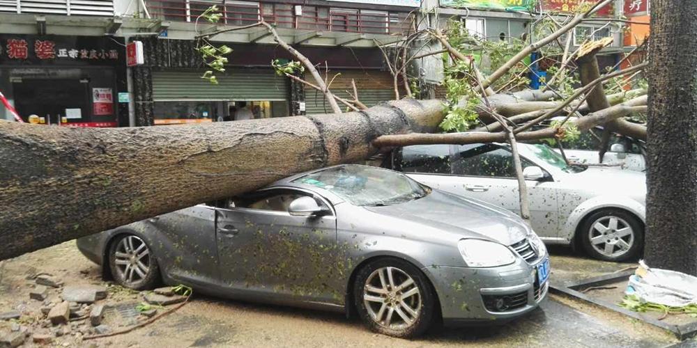 """Тайфун """"Хато"""" вышел на сушу в Южном Китае"""