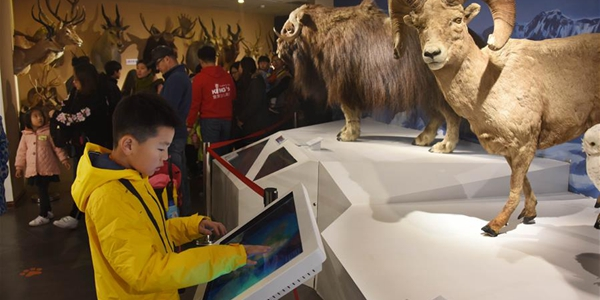 В Восточном Китае открылся Музей естественной истории Беринга