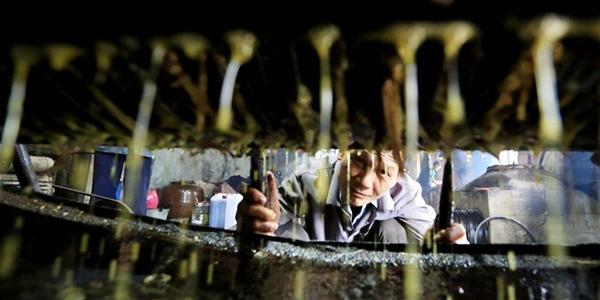 Производство камелиевого масла по древнейшей технологии в деревне Шаньвэй