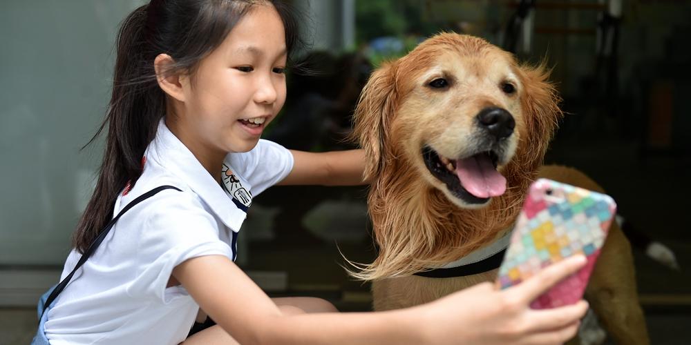 Таможенные собаки продемонстрировали юным жителям Гуанчжоу умения находить наркотики