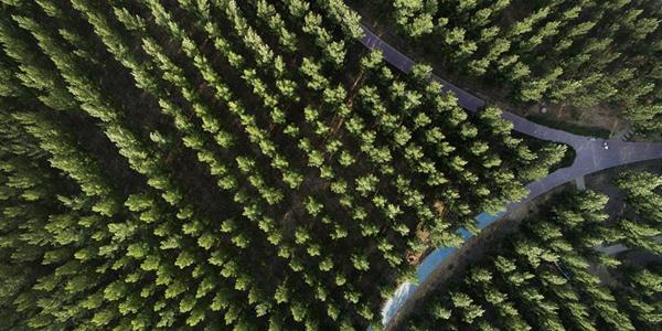 Создание экологических заграждений в уезде Хэян провинции Шэньси