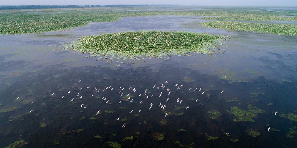 Живописные виды озера Хунху