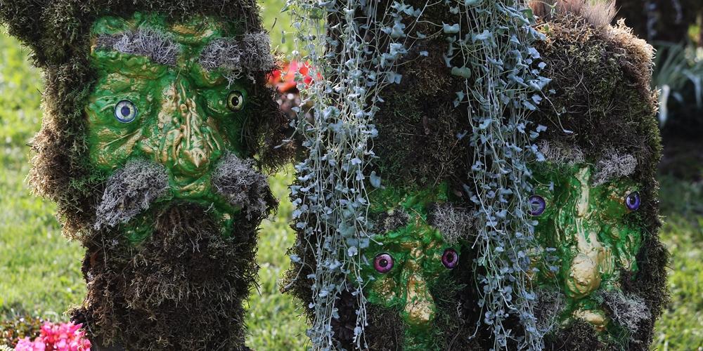 В Киеве открылась выставка цветов