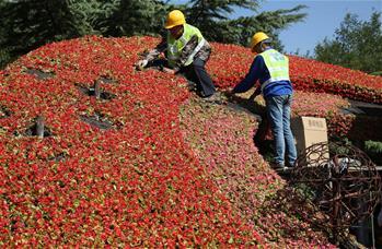 Гигантская цветочная корзина украсит к празднику центр Пекина
