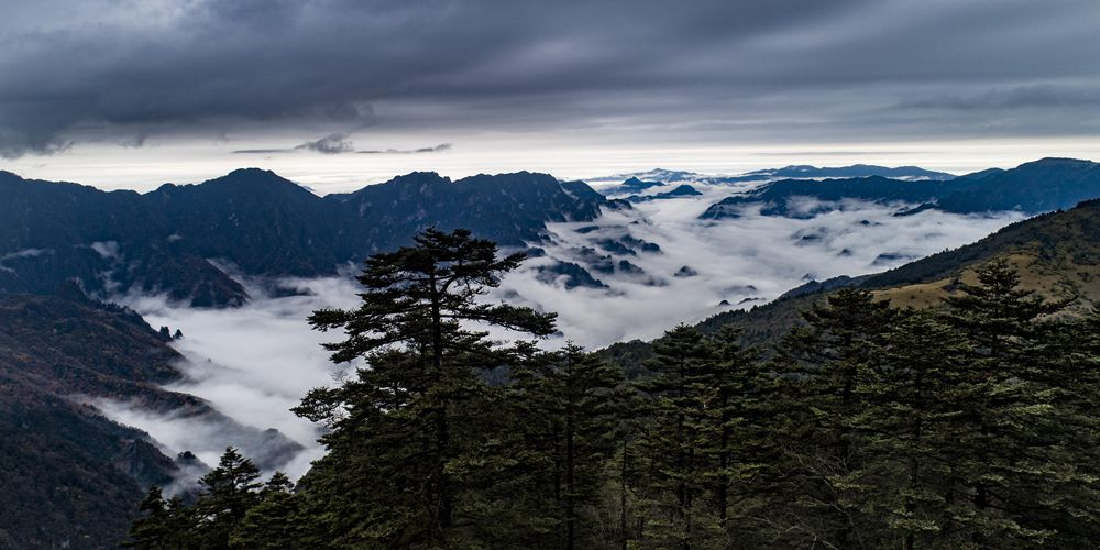 Туманный осенний день в Шэньнунцзя