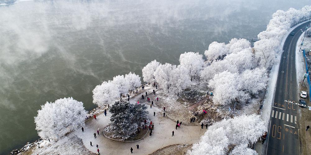 Зима на реке Сунгари