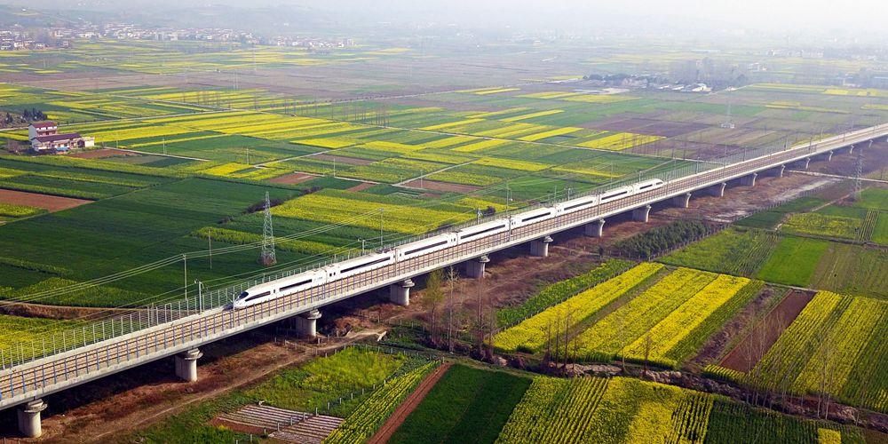 Высокоскоростной поезд посреди цветущих рапсовых полей