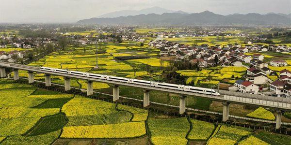 Золотые рапсовые поля под Ханьчжуном