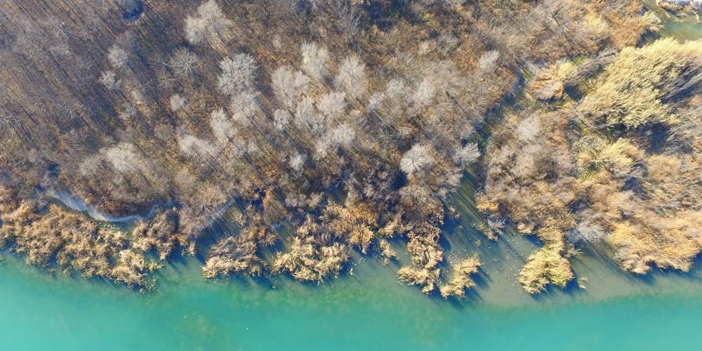Зеленый Китай -- Природное многоцветие к югу от Хуанхэ