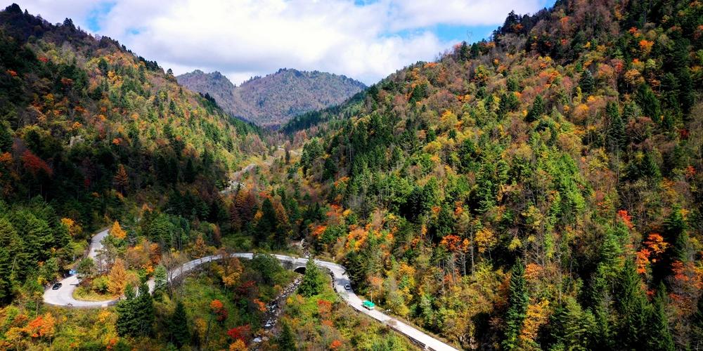 Чарующая красота осенних гор Циньлин