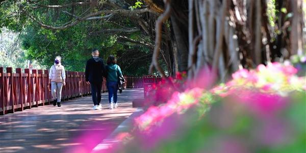 Борьба со вспышкой коронавирусной инфекции -- Часть парков в Фучжоу открылась для отдыхающих, но с ограничениями