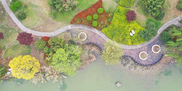 Буйство весенних красок в парке уезда Яньлин