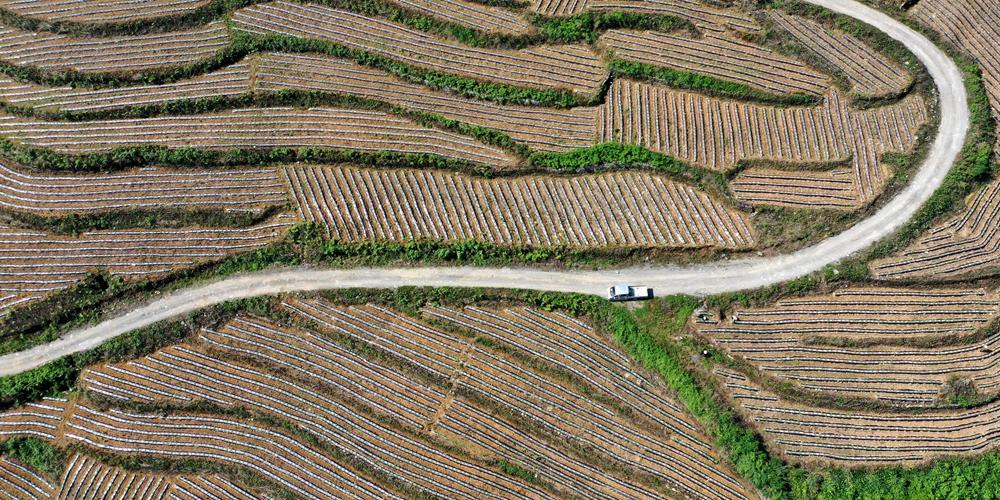 Необыкновенный вид на террасные поля на юго-западе Китая