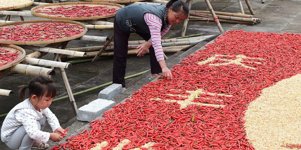 Осенний урожай в древней деревне на востоке Китая
