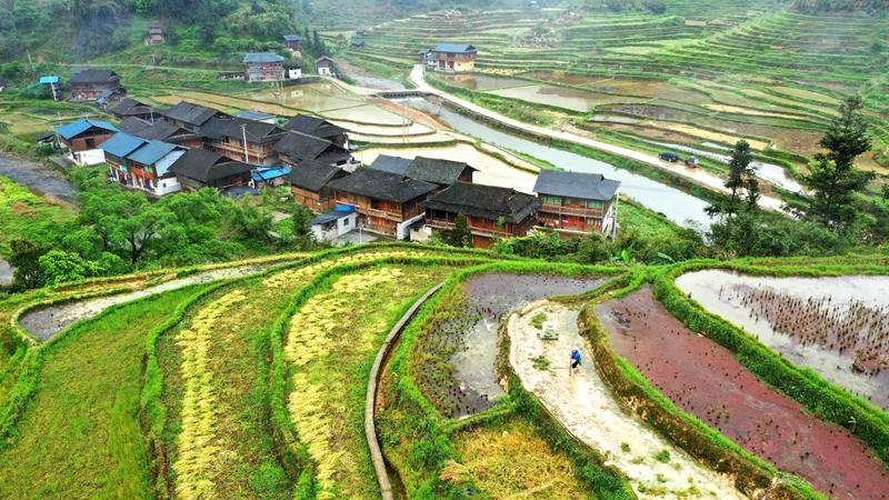 Весенняя страда на полях Китая