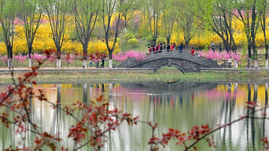 Весеннее цветение в парке Хуантайшань