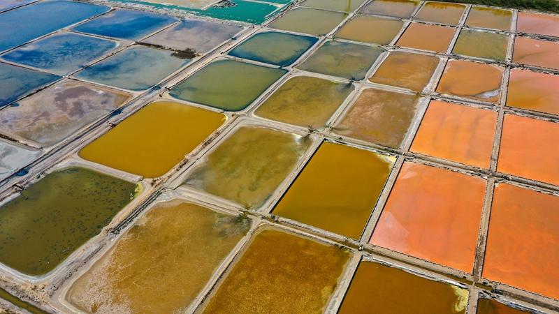 Разноцветные солеварни в провинции Шаньдун